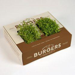 Kits de cultivo de brotes para hamburguesas tacos o sushi